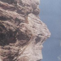 Gandigi